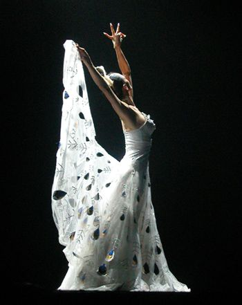 China's famous dancer Yang Liping performs in Buenos Aires