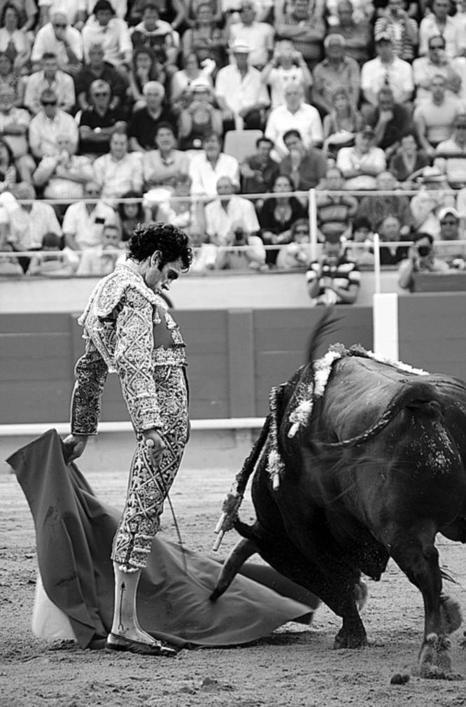 'Torear es vivir', la exposición de fotos sobre José Tomás   Fotogalería   Cultura   EL PAÍS