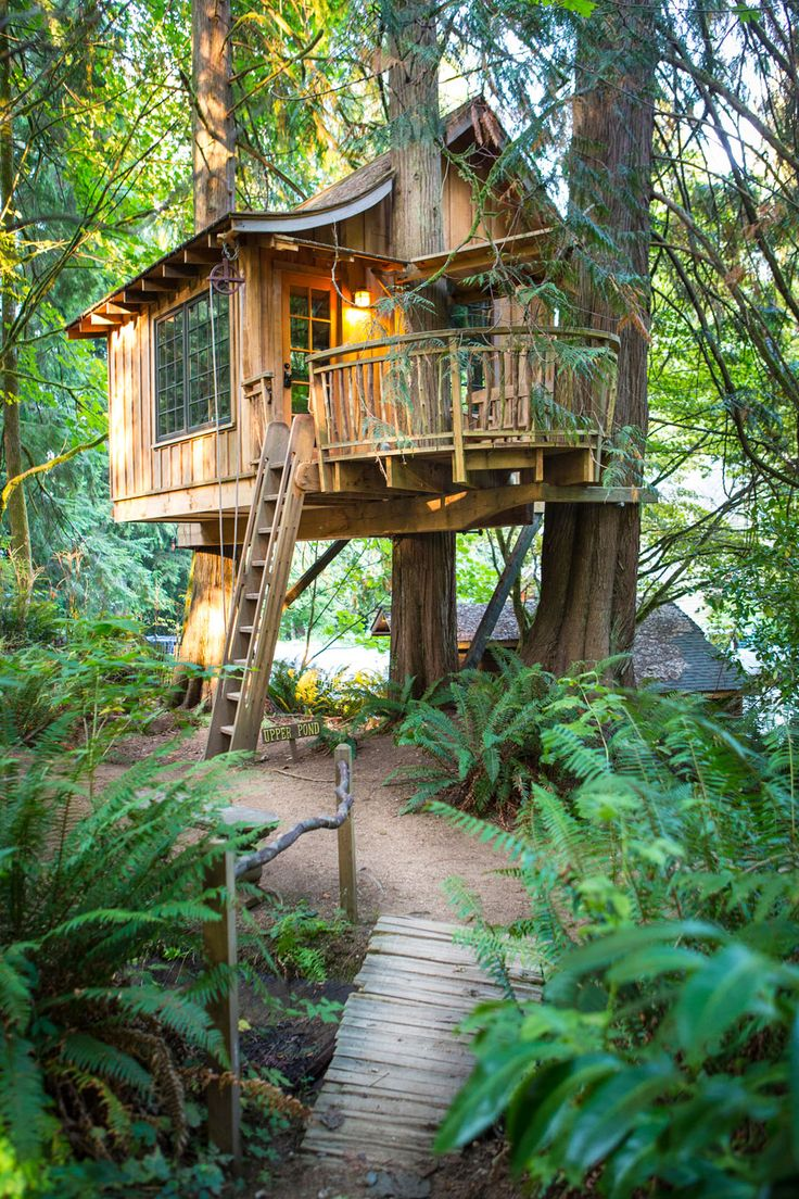 Upper Pond Treehouse at TreeHouse Point! This is the only treehouse we have that sleeps 4 people (via a combination of 3 beds: 1 shared Queen and 2 lofted Singles)
