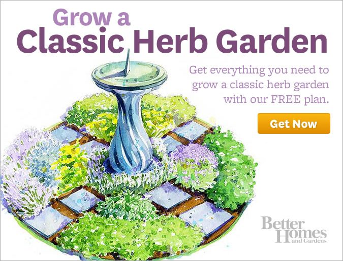 Herb Garden Layout Ideas vegetable garden design layout a simple small space garden layout with everything youd need to pluck Better Homes Gardens Online Classic Herb Garden Plan Free