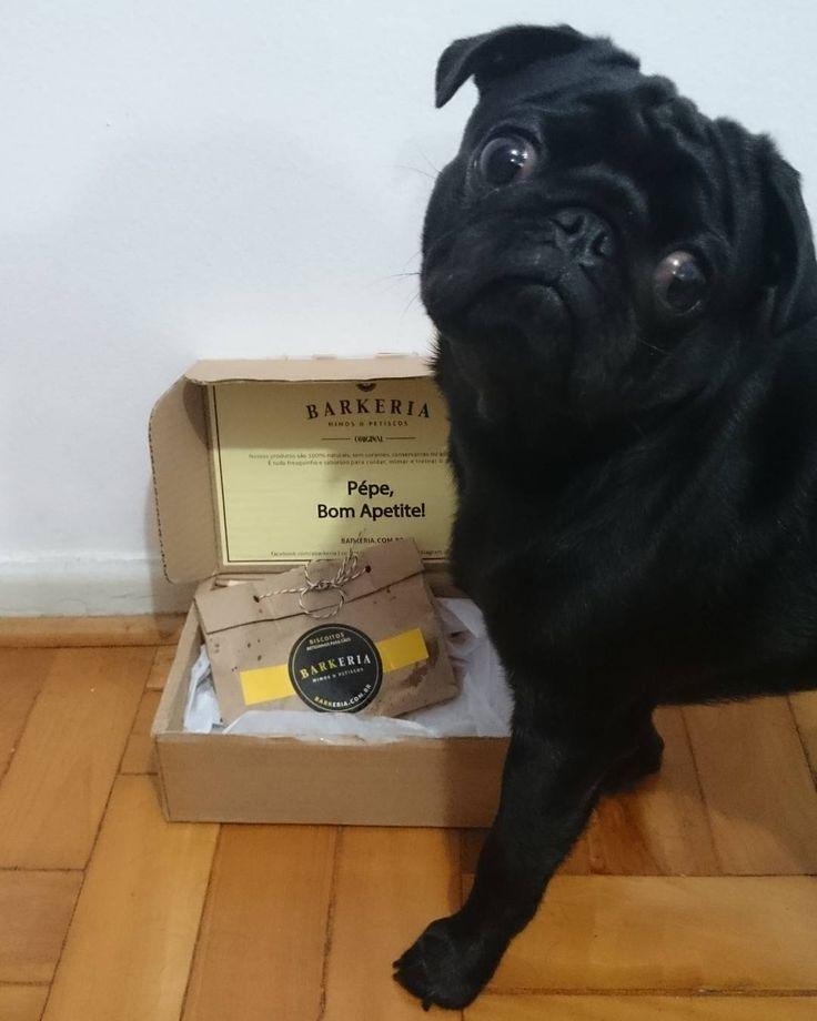 Petiscos naturais para treinar, mimar e cuidar do seu cão!  contato@barkeria.com.br  ☎️ (21) 97260-0031 (tel e whatsapp)  www.facebook.com/abarkeria
