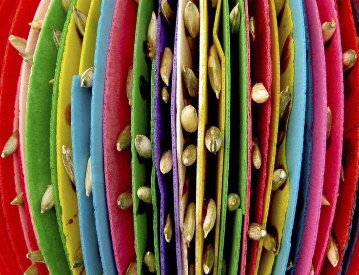 Con el paso del tiempo, y años de la colonia española, comenzaron a surgir varios dulces tradicionales mexicanos –y que hasta la fecha siguen intactos.