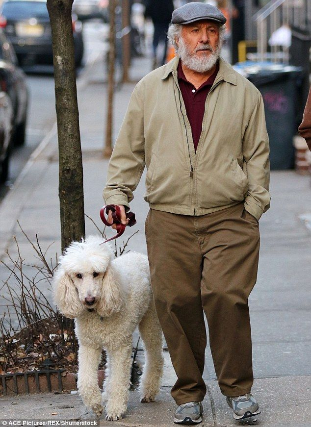 He looks ruff: Dustin Hoffman sported a bushy beard as he walked a dog on the set of The Meyerowitz Stories