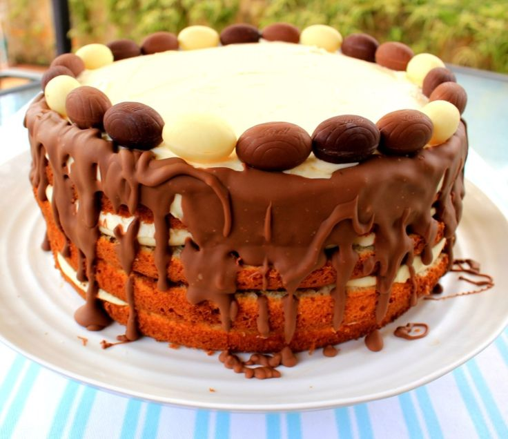 homemade tiramisu sponge cake soaked in coffee and liqueur mixture layered between sweet mascarpone cheese and decorated with chocolate.