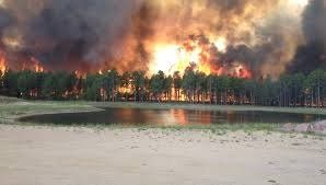 .@INTERPOL_EC ARSON> Ind name Foreign Com responsible Fires http://goo.gl/4x2dYb ACTIONS needed #StopTheFires