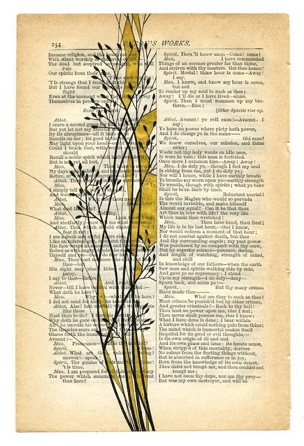 beautiful illustrations on book pages by paul desmond - Book Pages Art