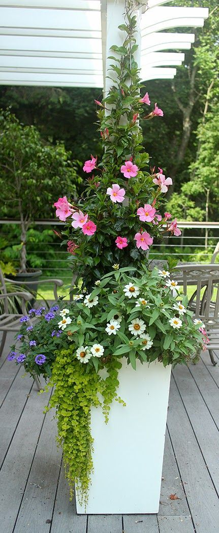 Tall garden planter with flowers