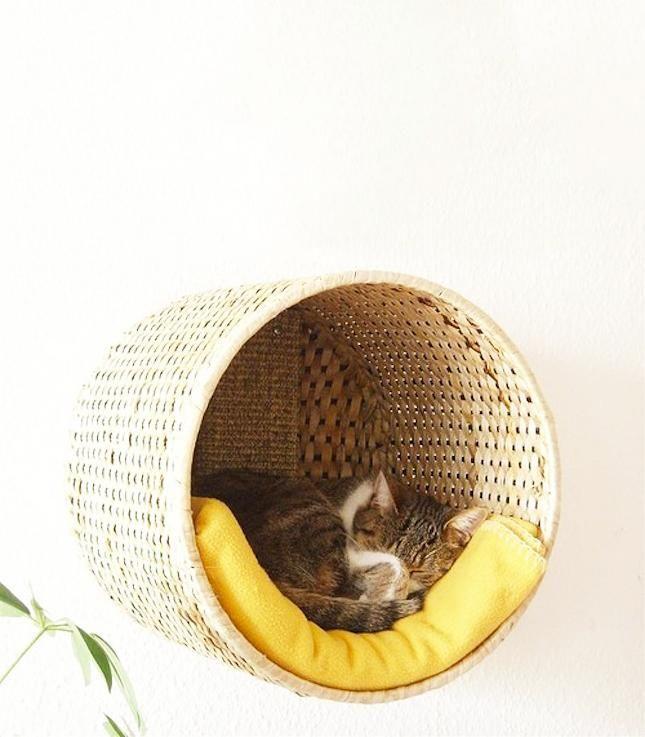 Tipi tendance, lit géométrique ou encore murale d'escalade, voici 10 idées de projets à faire soi-même qui rendront votre chat très heureux!