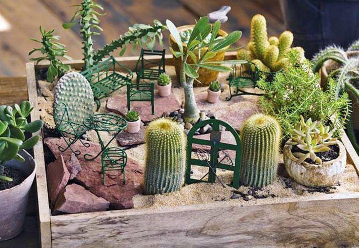 Un mini jardin cactuseros : cute a southwest  Fairy garden.