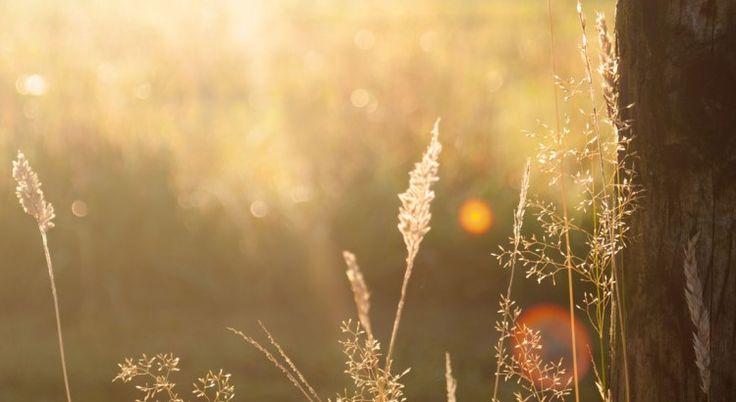 Welch eine himmlische Empfindung ist es, seinem Herzen zu folgen.   Zitate, Weisheit und Worte von Johann Wolfgang von Goethe