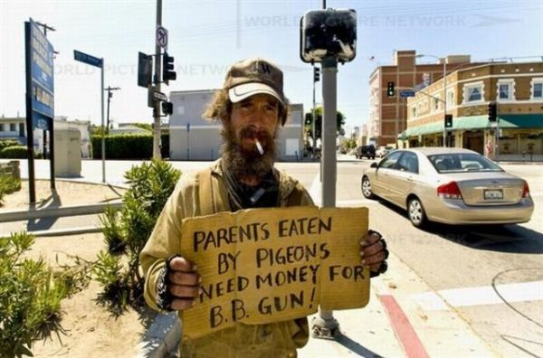 36 best images about homeless panhandler signs on pinterest