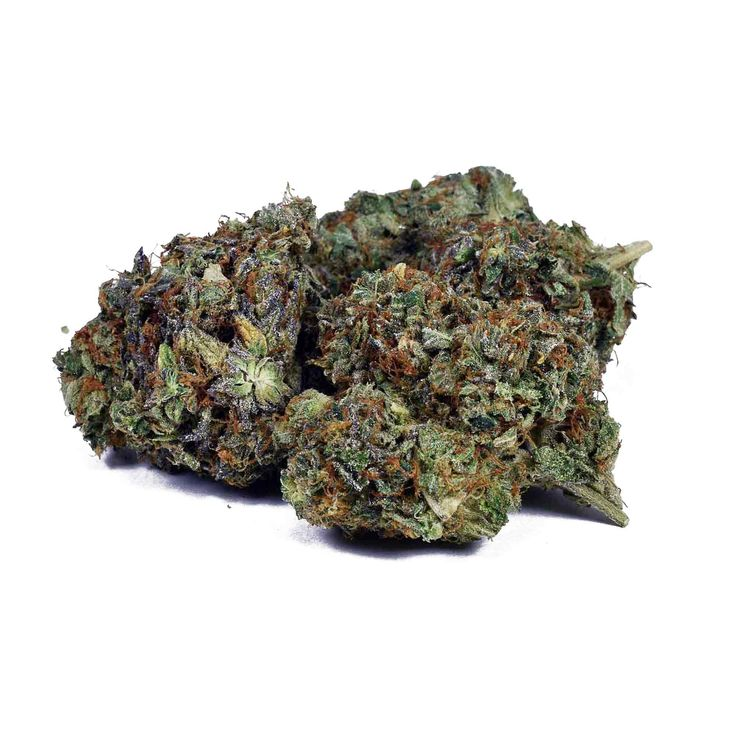 Organic Death Bubba Cannabis: Known for it's euphoric highs followed by extreme couch-lock, Death Bubba is the king of all Kushes. A 75% Indica that will induce an immediate state of euphoria followed by blissful numbness starting in the mind and extending to total body relaxation. A descendant of Bubba Kush and Death Star, it's THC levels are regularly above 25%. Earthy notes and clean taste are the hallmark of this powerful strain. Great for pain, anxiety, insomnia, uninterrupted sleep.