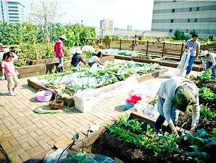 Para gerar bem estar, Tóquio tem hortas urbanas sobre os telhados das suas estações de metrô. Conheça mais em: http://ciclovivo.com.br/noticia/toquio-tem-hortas-urbanas-nas-estacoes-de-metro