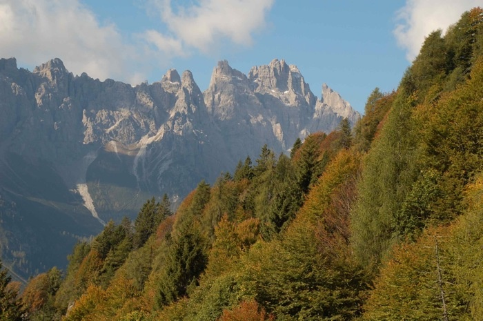 in Carnia, Friuli Venezia Giulia, Italy (foto Alberto Cella/UD)