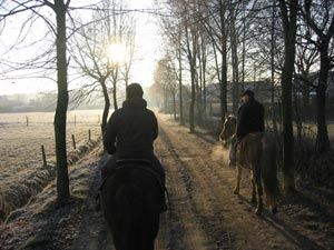 wandeltochten te paard http://www.elschot-stables.be/buitenritten-wandelingen-trektochtentepaard.html?gclid=CMrKssGJnb0CFasEwwodV14Ahg