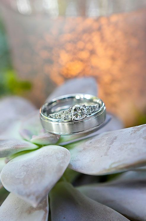 The bride and groom's wedding rings rest on a succulent for a photograph.