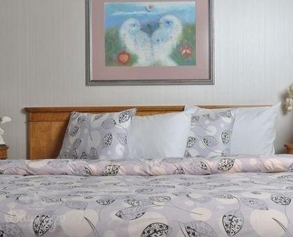 Купить постельное белье из ранфорса BRIELLE 164 1,5-сп от производителя Brielle (Турция)
