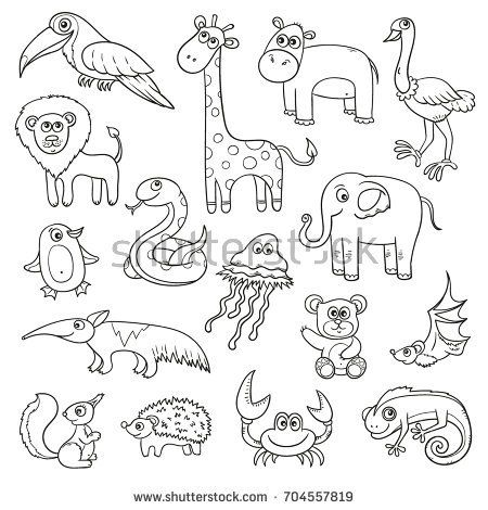 how to draw a little jungle for kids