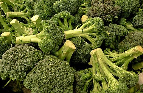 The Persecuted Crucifer (Broccoli!)Open Sources, Broccoli Eaten, Eating Broccoli, Foodies Heard, Seeds Initials, Food Activist, Sources Seeds, Plants Breeders, Eaten Raw