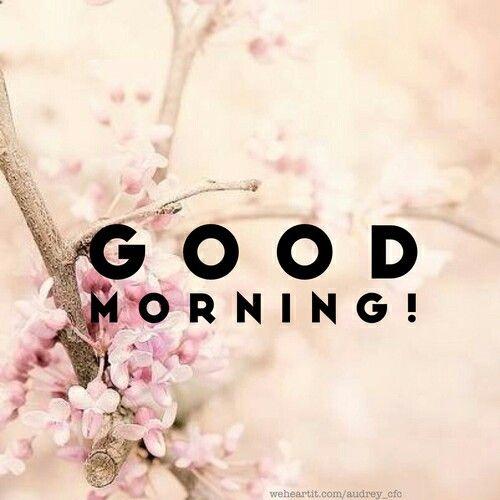 Guten Morgen Good Morning Buenos Dias Lied : Die besten ideen zu good morning sexy auf pinterest