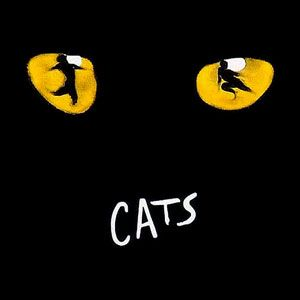 Cats...Las Vegas...