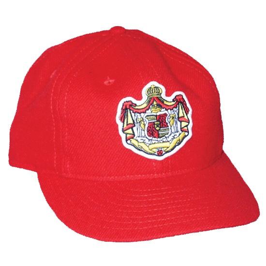 b5099a27 Hi-Vis Baseball Hats · Hawaii Baseball Caps: 20 Best Images About My  Throwback Caps On Pinterest