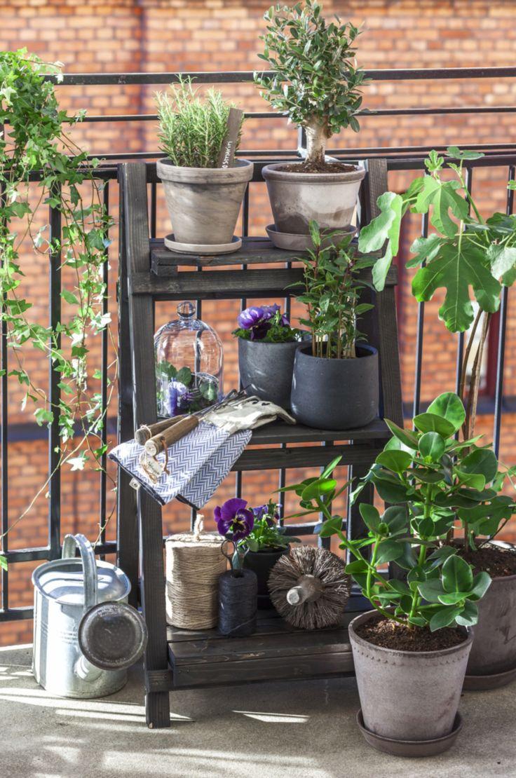 Inred balkongen för vårens och sommarens utomhusliv med massor av härliga blommor och växter. Inspireras av en blomstrande terrass i blå toner mixat med detaljer i järnsmide och makramé.