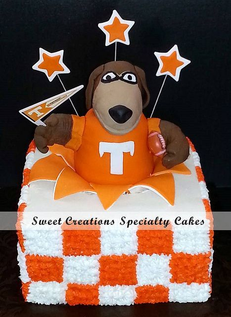 215ff3a7aa1aa593815fd3d0f8d56cef tennessee florida tennessee football 7 best cakes images on pinterest anniversary parties, birthday