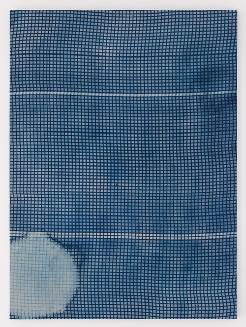 ablankcheque:  Untitled, Cyanotype, Hugh Scott-Douglas, 2013