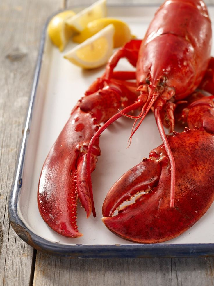 Steamed Lobster Cooking Tips | Maine Lobster Marketing Collaborative