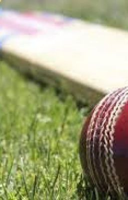 Cricket Betting Tips - www.cbtf.report – Sikander Betting Tips: Welcome to free online cricket betting tips, ipl Tips or Asia cup betting tips, Get accurate online tips for all cricket matches. cricket new best tips proving site #Cricket #Betting #Tips #sports #CricketBettingTips, #CricketBettingTipsfree