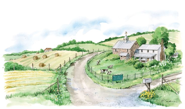 If you've dreamed of owning a few acres to start your own homestead, here's some practical advice on how to buy farmland (even if you think you can't). From MOTHER EARTH NEWS magazine.