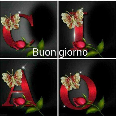 4109 best buongiorno images on pinterest buen dia good for Buongiorno con gattini