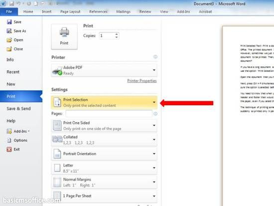 How to Print Selected Text In Word 2010