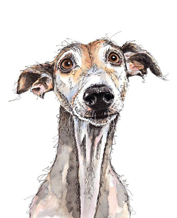 Your Place To Buy And Sell All Things Handmade In 2020 Greyhound Card Greyhound Gift Greyhound