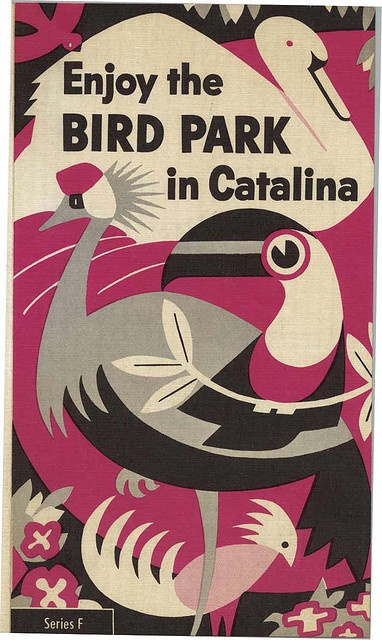 vintage brochure for the bird parkCovers Book, Birds Of Paradis, Vintage Birds, Birds Parks, Graphics Design Posters, Book Covers, Vintage Brochures, Travel Guide, Catalina Islands