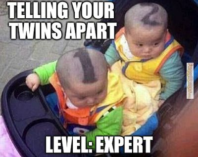 BahahaHahaa hilarious. I don't know how parents with twins do it! I would have to get one tattood, or shave their heads!! Priceless.