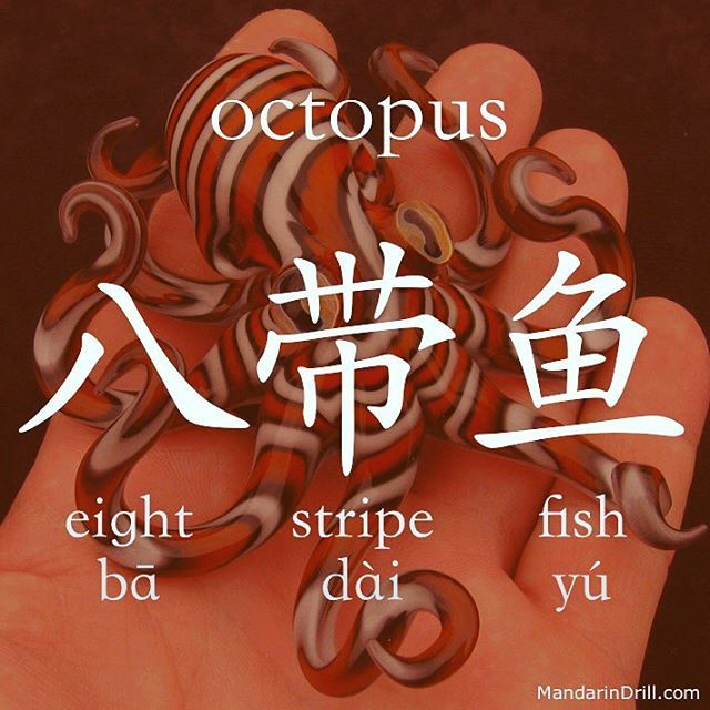 八带鱼 OCTOPUS A fish with eight stripes, this does make sense, doesn't? #octopus #chinese #china #calligraphy #hsk #rebus
