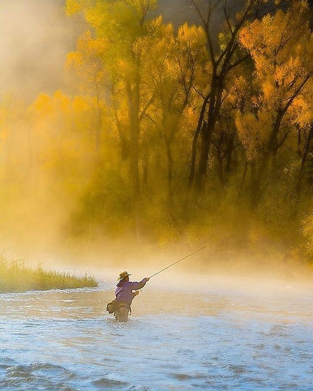 The first touches of fall colors are hitting the Roaring Fork Valley. With misty…
