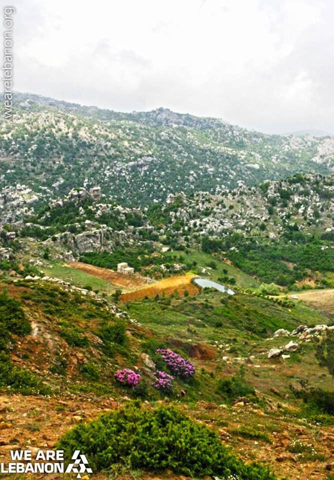 #Lebanon's green mountains جبال #لبنان الخضرا Photo by Raja Khouri #WeAreLebanon