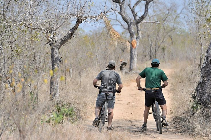 For the adventurous guest, a mountain bike ride through the reserve just can't be beat.