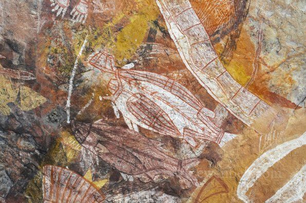 Injalak hill, East Arnhem Land - rock art (barramundi)