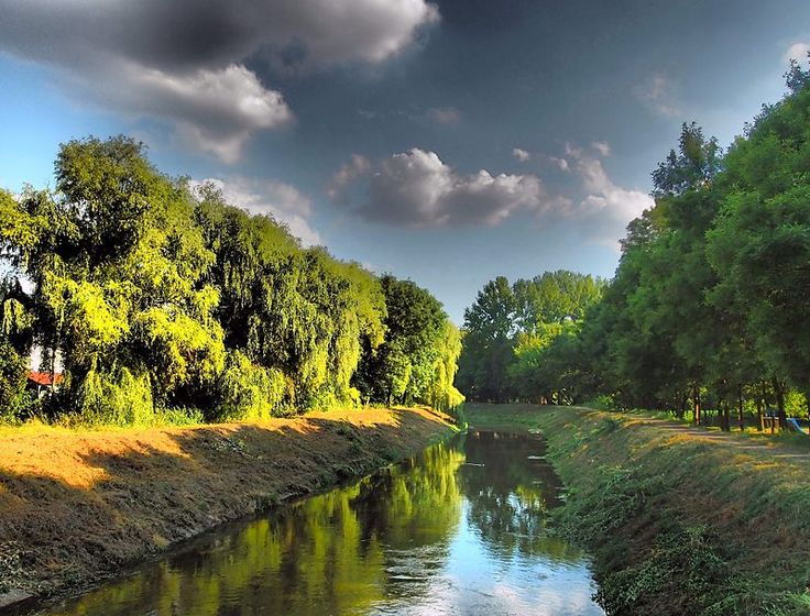 Park Grabek w Czeladżi - Czeladź (miasto)