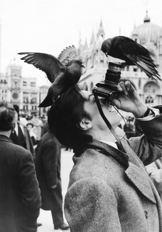 ♔ French actor Alain Delon in Venice