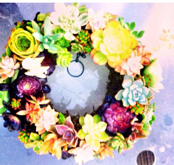 Living succulent wreath  by Amberlightsdecor on Etsy, $50.00
