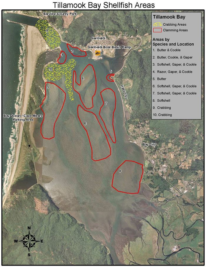 Coos Bay clamming u0026 crabbing map