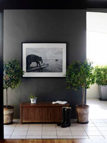 Moderne Klassik Eingang & Garderobe by Claire Stevens Interior Design