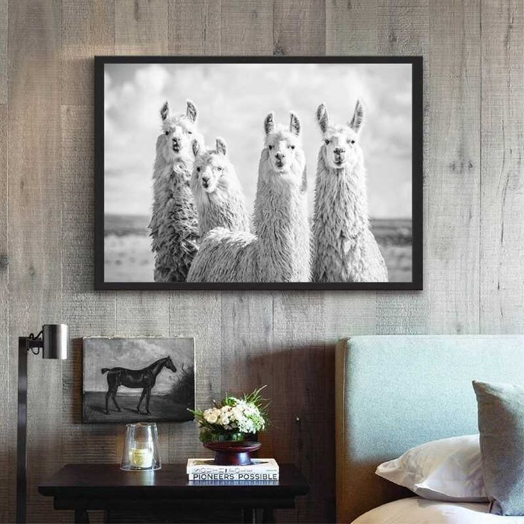 Lustige Tiere Lama Poster Leinwand Tier Alpaka Schwarz Weiß Fotografie Malerei Bild Boho Kindergarten Wandkunst Dekor
