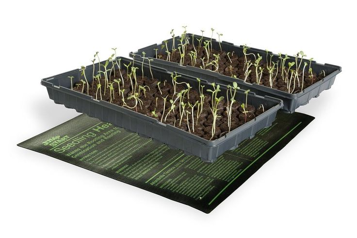 Hydrofarm Seedling Heat Mat - Waterproof Construction - 20-by-20-Inch - WARM