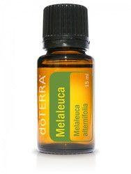 Melaleuca Essential Oil 15ml